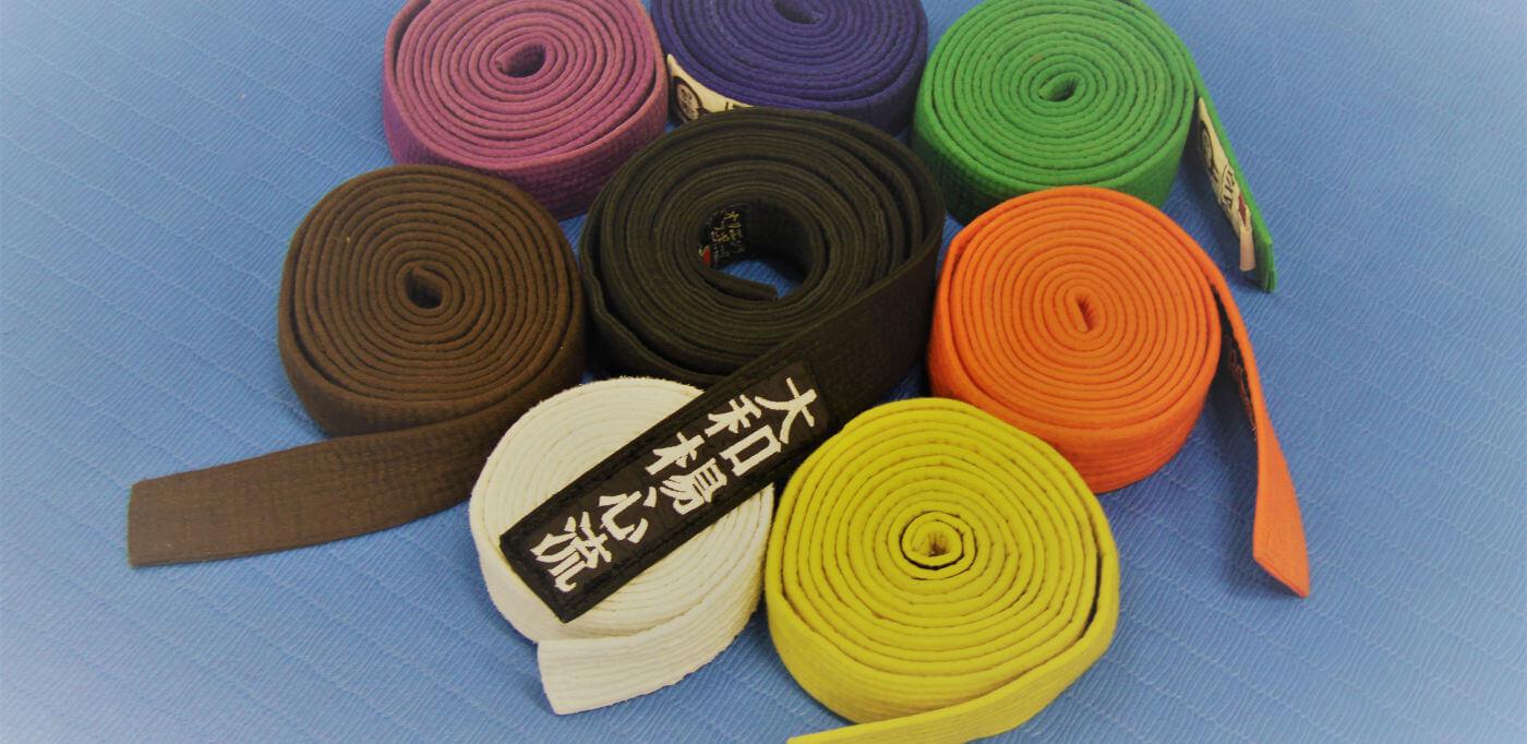 le cinture del jujitsu
