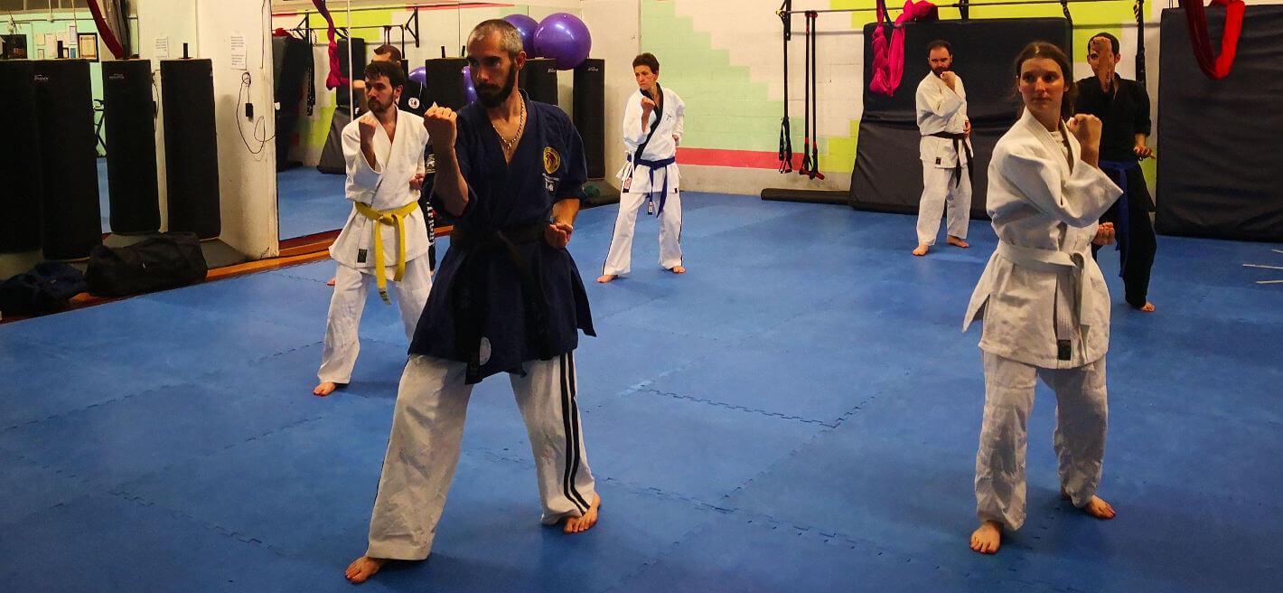 lezione di jujitsu a parma - maestro con discepoli